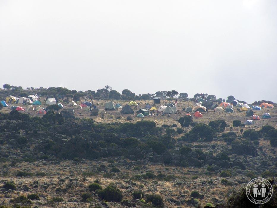 Das Lager bei der Shira Hut am Kilimanjaro.