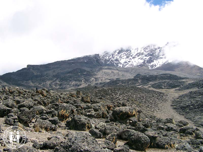 Der Weg zum Barranco Camp am Kilimanjaro.