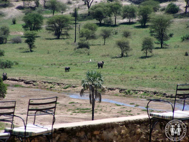 Blick von der Terrasse der Lodge.