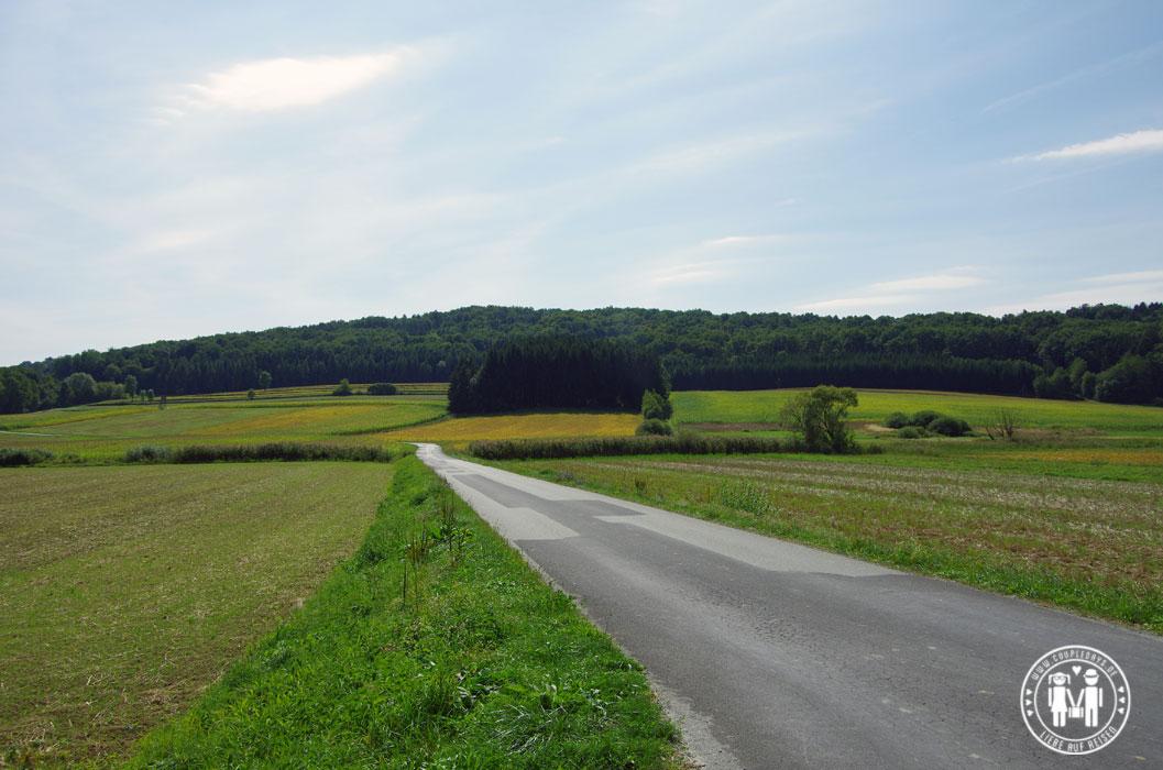 Straße Richtung Güssing