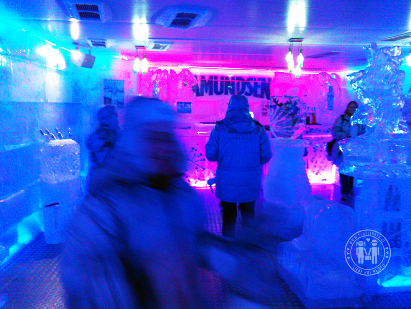 Die Eisbar Amundsen in Bratislava